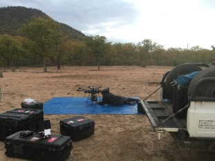 Alta 8, Freefly systems, Movi M15, Red Weapon, UAV, Heavy lift, Zimbabwe, Africa, Flying Camera Company, Drone, Filming, Natural History,
