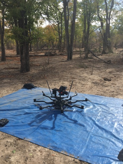 Top mounted, Alta 8, Freefly systems, Movi M15, Red Weapon, UAV, Heavy lift, Zimbabwe, Africa, Flying Camera Company, Drone, Filming, Natural History,